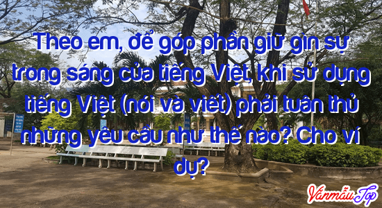 Theo em, để góp phần giữ gìn sự trong sáng của tiếng Việt, khi sử dụng tiếng Việt (nói và viết) phải tuân thủ những yêu cầu như thế nào? Cho ví dụ?