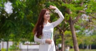 """hoaphuong 17 310x165 - Soạn bài: """"Khóc Dương Khuê"""" ( Nguyễn Khuyến) – văn lớp 11"""